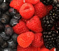 artritis_berries